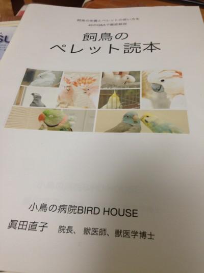 IMG_3947.jpg