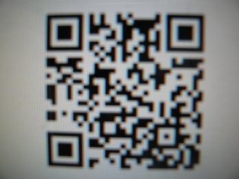 P1150028.jpg