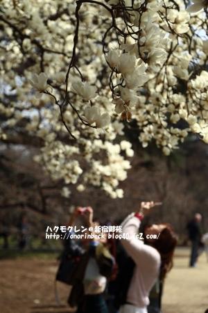 EOS6D_2015_03_22_9999_10.jpg