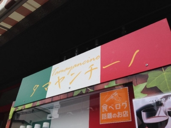 AbikoTamayancino_001_org.jpg
