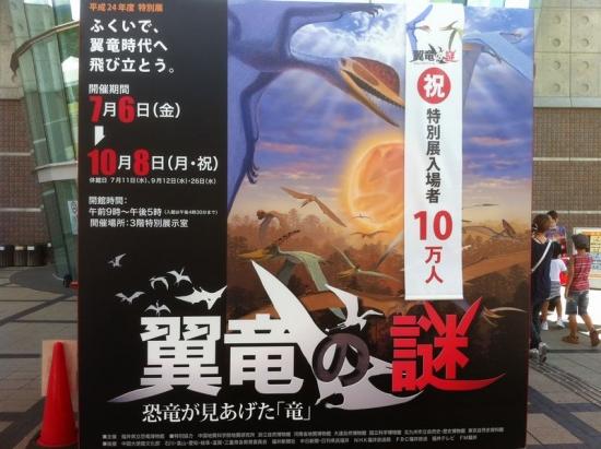 FukuiDinosaur_000_org.jpg
