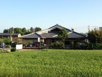 FukusakiMochimugi_000_org.jpg