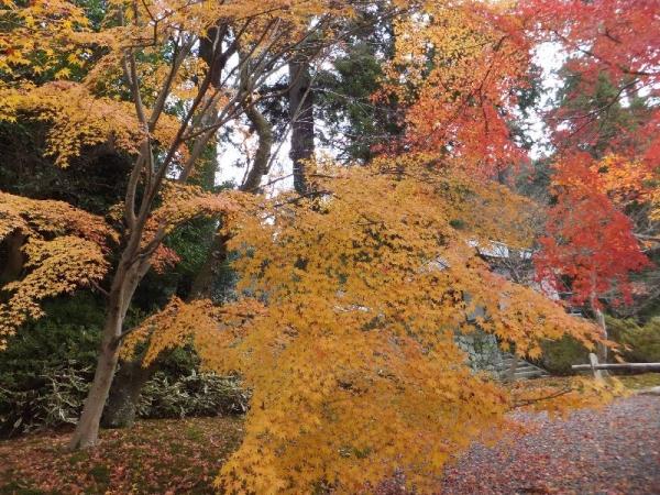 Hirokawadera_005_org.jpg