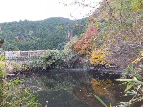 Hirokawadera_010_org.jpg