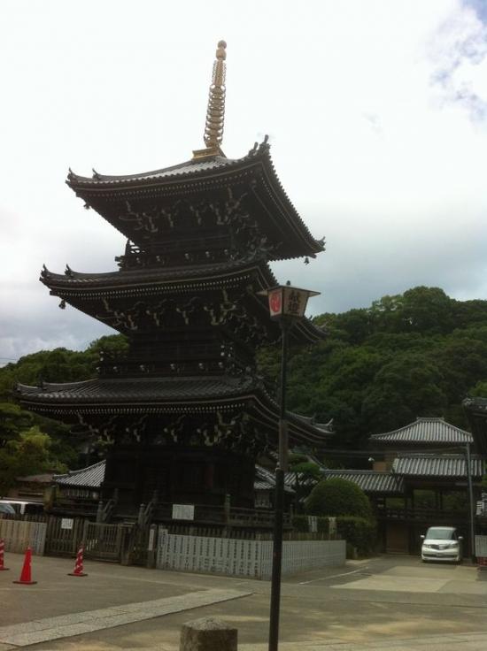 Mizuma_010_org2.jpg