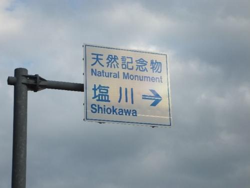 MotobuShiokawa_000.jpg