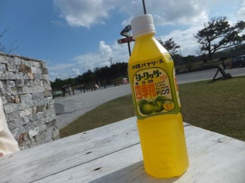 Nakijinjo_011_org.jpg