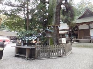 Ohmiwa_007_org.jpg