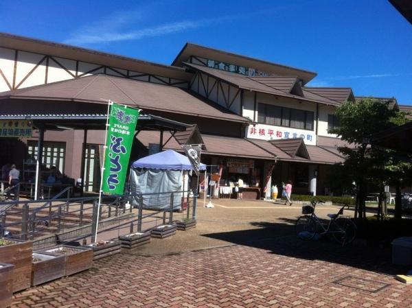 Tatsutagawa_001_org.jpg