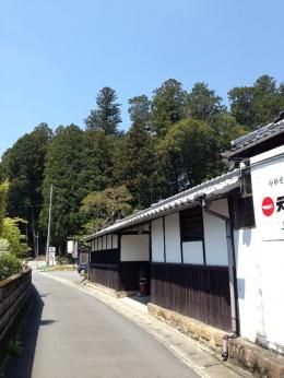 Ten1Kamiasamiya_002_org.jpg
