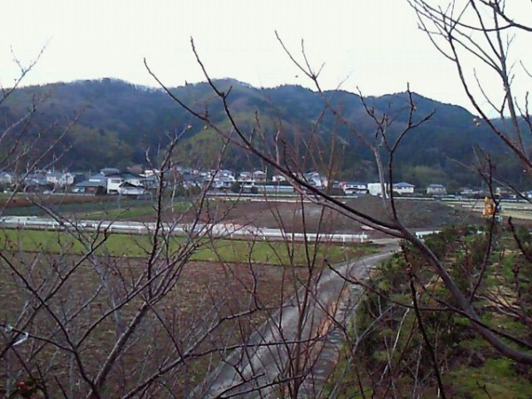 Tokushima_011_org.jpg