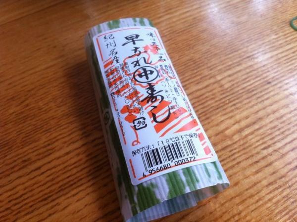 WakayamaMaru3_002_org.jpg