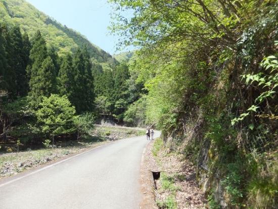 YabuTentaki_000_org.jpg