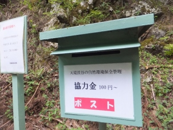 YabuTentaki_012_org.jpg