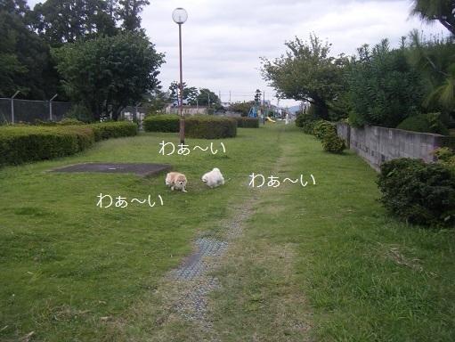 DSCF8912.jpg