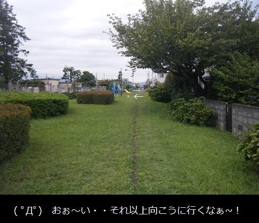 DSCF8915.jpg