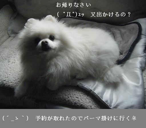 DSCF9258.jpg