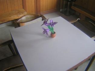 2015_02_02_油日神社・柘植_099