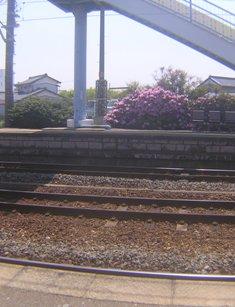 2015_04_27_多度大社・名古屋_060