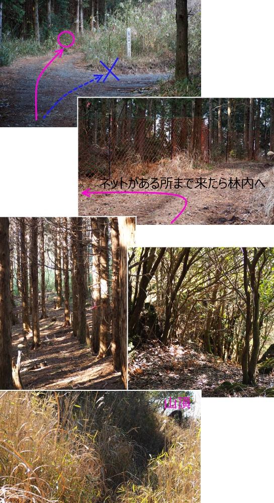 3高畑山登山道