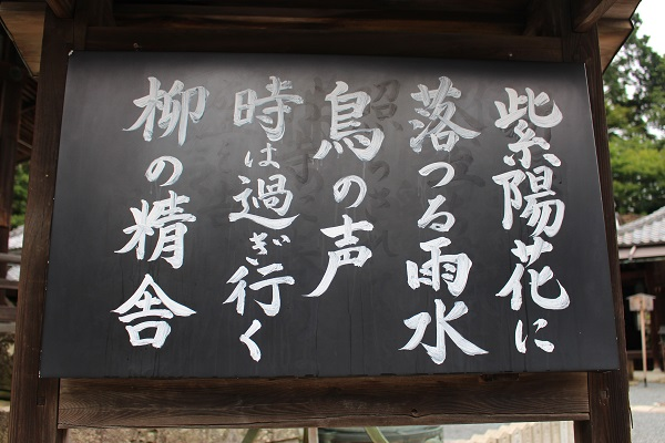 2015.07.02 柳谷観音①(紫陽花)-3