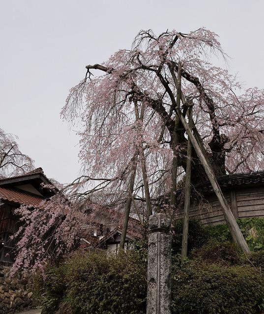 円正寺15
