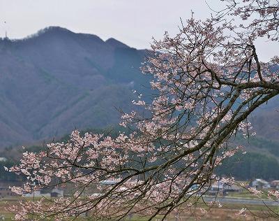 円正寺10