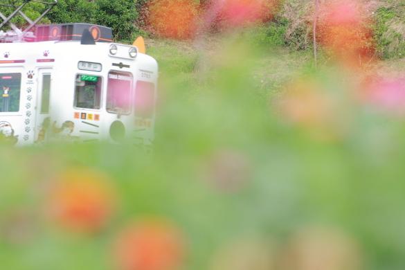 2015/6/28 和歌山電鐵貴志川線 吉礼~伊太祈曽