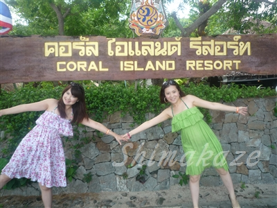 コーラル島観光ツアー象さんトレッキング