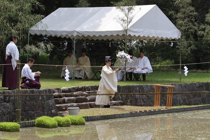 橿原神宮 御田植祭1