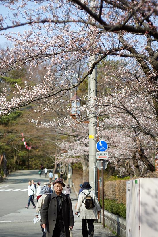 meitoku2.jpg