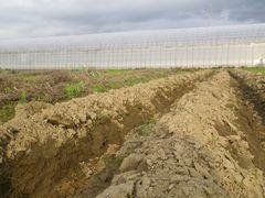 [写真]深く掘り返された三郎畑の様子