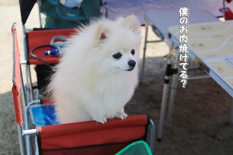 20150628-IMG_9865.jpg