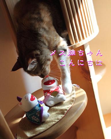 blog桃の節句3