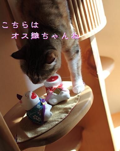 blog桃の節句4
