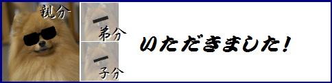 blog業界用語2