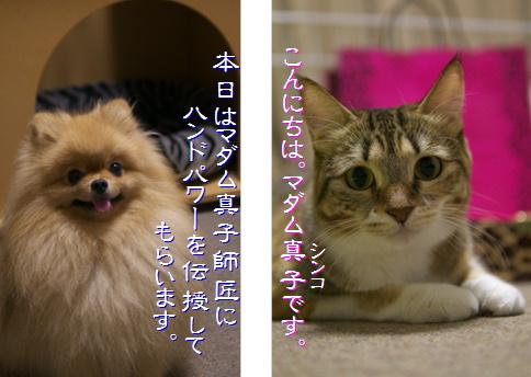 blog-hp1-1.jpg