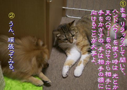 blog-hp1-2.jpg