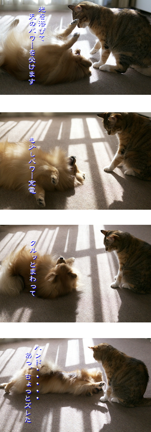 blog-hp1-3.jpg