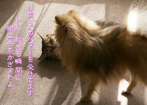 blog-hp1-6.jpg