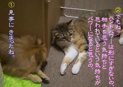 blog-hp1-8.jpg