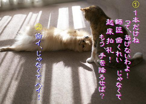 blog-hp2-10.jpg