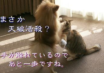 blog20150408-1.jpg