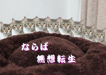 blog20150408-2.jpg