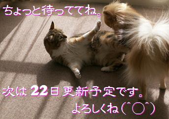 blog20150408-3.jpg