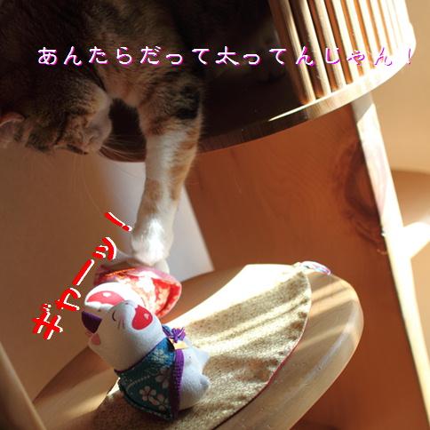 blog20150422-6.jpg
