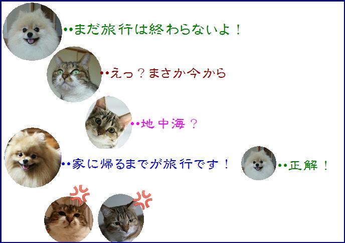 bloghawaii1-10a.jpg