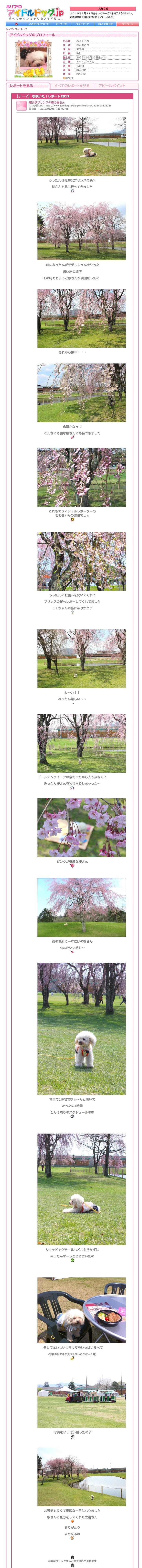 軽井沢プリンスの森の桜さん
