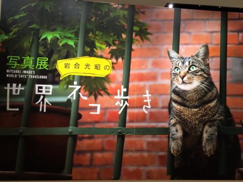 iwagou_201504211105.jpg