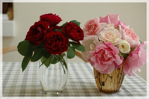 庭のバラを飾る